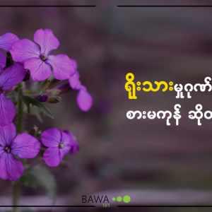စွမ်းရည်, ပျော်ရွှင်သောဘဝ, လူနေမှုဘဝ